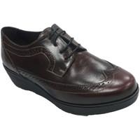 Sapatos Mulher Sapatos Sigo Sapato feminino com laços em cunha inglesa  em Bordeaux violeta