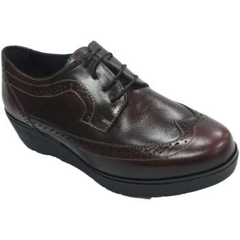 Sapatos Mulher Sapatos Sigo Sapato feminino com laços em cunha ingle burdeos