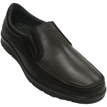 Sapatos Homem Mocassins Pitillos Pá de sapato suave  em Brown marrón