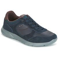 Sapatos Homem Sapatilhas Geox U DAMIAN Azul