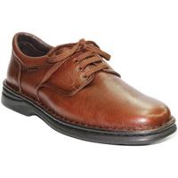 Sapatos Homem Mocassins Tolino Cadarços de sapatos muito resistente em marrom marrón