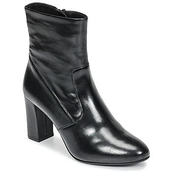 Sapatos Mulher Botins Steve Madden AVENUE Preto
