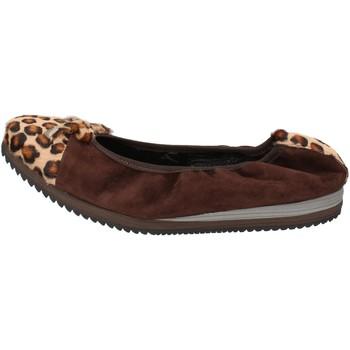 Sapatos Mulher Sabrinas Calpierre Sapatilhas AD574 Castanho