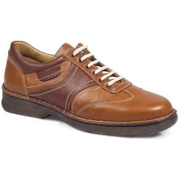 Sapatos Mulher Sapatos & Richelieu Calzamedi Sapatos  Shark M 2151 MARRON