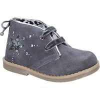 Sapatos Rapariga Botins Didiblu Botins AD979 Cinza