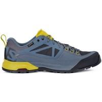 Sapatos Homem Sapatilhas Salomon X Alp Spry Gtx Azul,Amarelo
