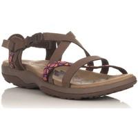 Sapatos Sandálias desportivas Skechers 40955 Castanho