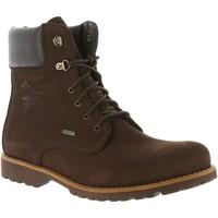 Sapatos Homem Botas baixas Panama Jack LINDEL GTX C1 BROWN Marrón