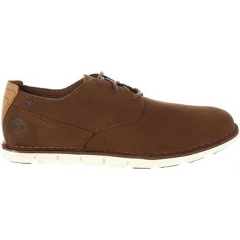 Sapatos Homem Sapatos & Richelieu Timberland A1PF2 TIDELANDS Marrón