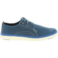Sapatos Criança Sapatos & Richelieu Timberland A1R8J GATEWAY Azul