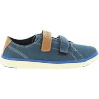 Sapatos Criança Sapatilhas Timberland A1R97 GATEWAY Azul
