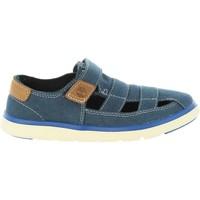 Sapatos Criança Sandálias Timberland A1P8D GATEWAY Azul