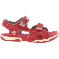 Sapatos Criança Sandálias Timberland A1QEV ADVENTURE Rojo