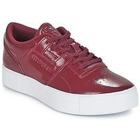 Sapatos Mulher Sapatilhas Reebok Classic WORKOUT LO FVS Bordô