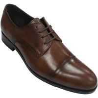 Sapatos Homem Sapatos Tolino Vestido de sapato clássico com laços  em Couro marrón