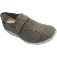 Sapatos Mulher Slip on Doctor Cutillas Sapatos femininos que simulam sapatos de camurça  em Beig beige