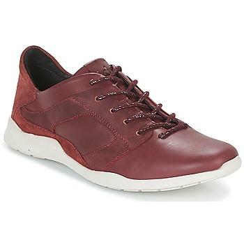 Sapatos Mulher Sapatilhas TBS JARDINS Castanho