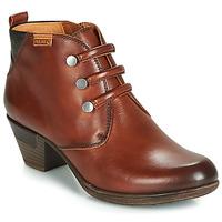 Sapatos Mulher Botins Pikolinos ROTTERDAM 902 Castanho