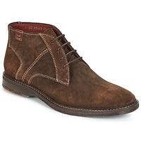 Sapatos Homem Botas baixas Lloyd DALBERT Castanho