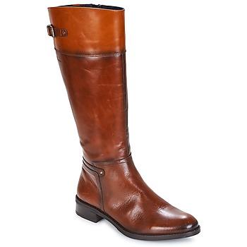 Sapatos Mulher Botas Dorking TIERRA Castanho