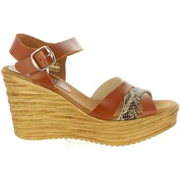 Sapatos Mulher Sandálias Cumbia 31001 Marrón