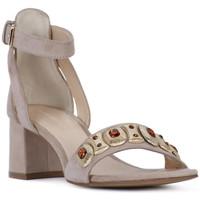 Sapatos Mulher Sandálias Elvio Zanon SANDALO Rosa