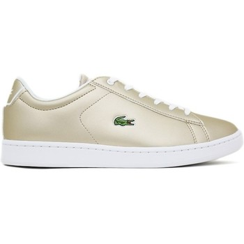 Sapatos Mulher Sapatilhas Lacoste CARNABY EVO 218 1 Ouro