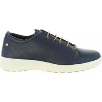 Sapatos Homem Sapatos & Richelieu Panama Jack TOMMY C2 Azul