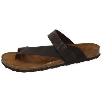 Sapatos Homem Sandálias Interbios  Castanho