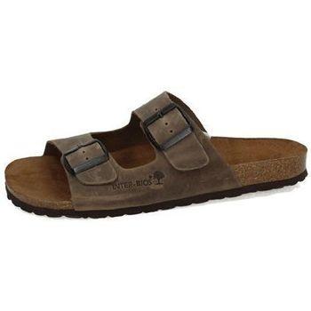 Sapatos Homem Chinelos Interbios  Castanho
