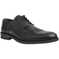 Sapatos Homem Sapatos Pelflex M Shoes Man Preto