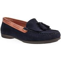 Sapatos Mulher Mocassins Wilano L Shoes Lady Azul
