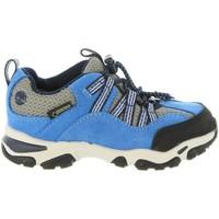 Sapatos Criança Sapatilhas Timberland A1QHD TRAIL Azul