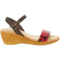 Sapatos Mulher Sandálias Cumbia 31009 Rojo