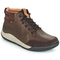 Sapatos Homem Sapatilhas de cano-alto Clarks ASHCOMBE Castanho