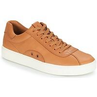 Sapatos Homem Sapatilhas Polo Ralph Lauren COURT 100 Castanho