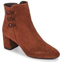 Sapatos Mulher Botins Betty London JOYE Camel
