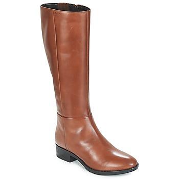 Sapatos Mulher Botas Geox D FELICITY Castanho