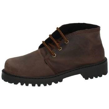 Sapatos Mulher Botas baixas Potomac  Castanho