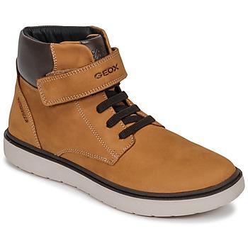 Sapatos Rapaz Sapatilhas de cano-alto Geox J RIDDOCK BOY WPF Castanho