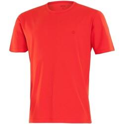 Textil Homem T-Shirt mangas curtas Impetus 7304E62 F04 Vermelho