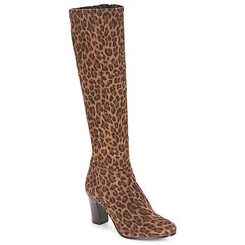 Sapatos Mulher Botas André GANTELET 4 Leopardo