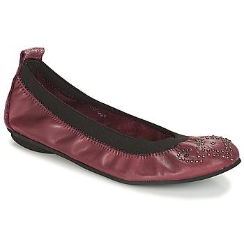 Sapatos Rapariga Sabrinas André FAUSTINE Bordô