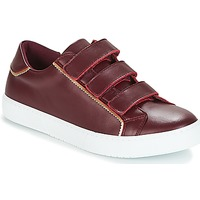 Sapatos Mulher Sapatilhas André CRICKET Bordô