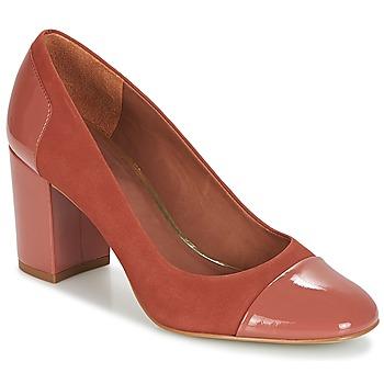 Sapatos Mulher Escarpim André BRUNA Rosa