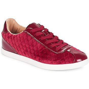 Sapatos Mulher Sapatilhas André VELVET Vermelho
