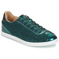 Sapatos Mulher Sapatilhas André VELVET Verde