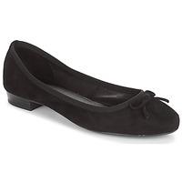 Sapatos Mulher Sabrinas André CINDY Preto
