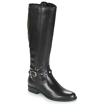 Sapatos Mulher Botas André TESS Preto