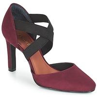 Sapatos Mulher Escarpim André FIONA Bordô